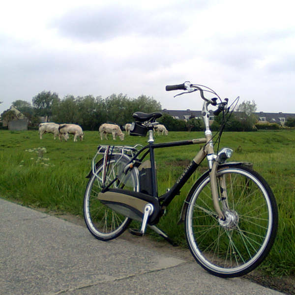 Gazelle Easy Glider e-bike