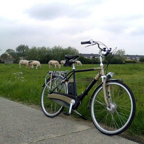 testverslag gazelle elektrische fiets easy glider. Black Bedroom Furniture Sets. Home Design Ideas